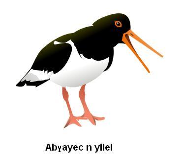 Abghayec-n-yilel-MWL.png