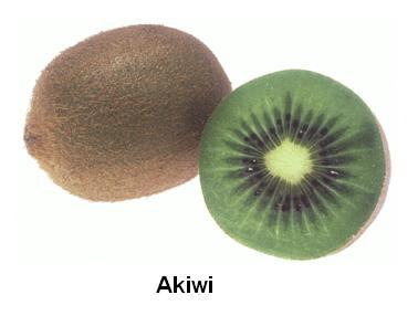 Akiwi-MWL.JPG